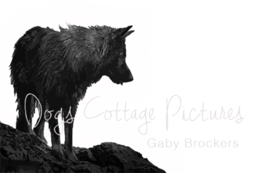 tierfoto dogs cottage - Gaby Brockers